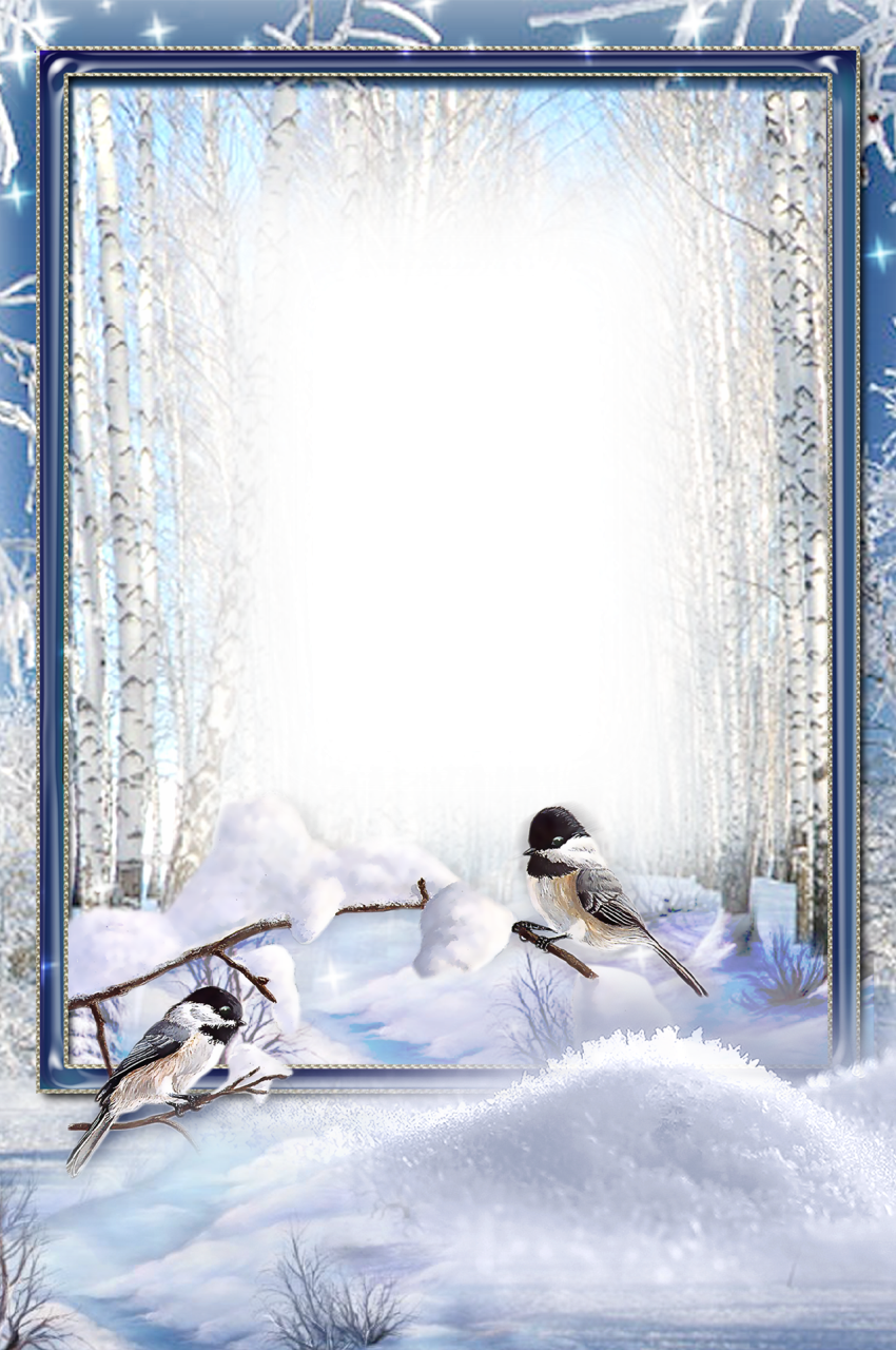 Frame For Photo Winter Birds Png 850 1280 Christmas Stationary Christmas Frames Photomontage
