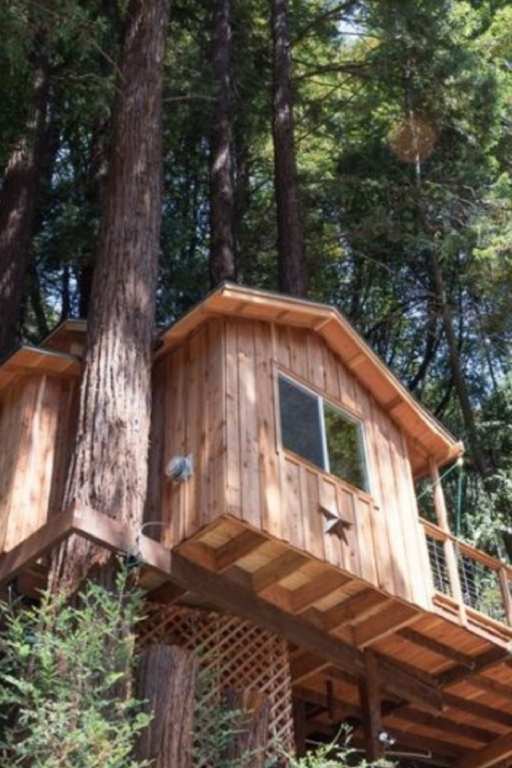 Tree House Rental for Couples near Santa Cruz for Romantic ...