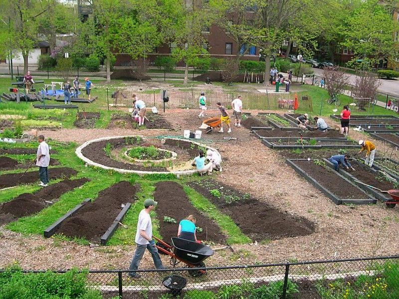 community garden design - Google Search | Community Garden Ideas ...