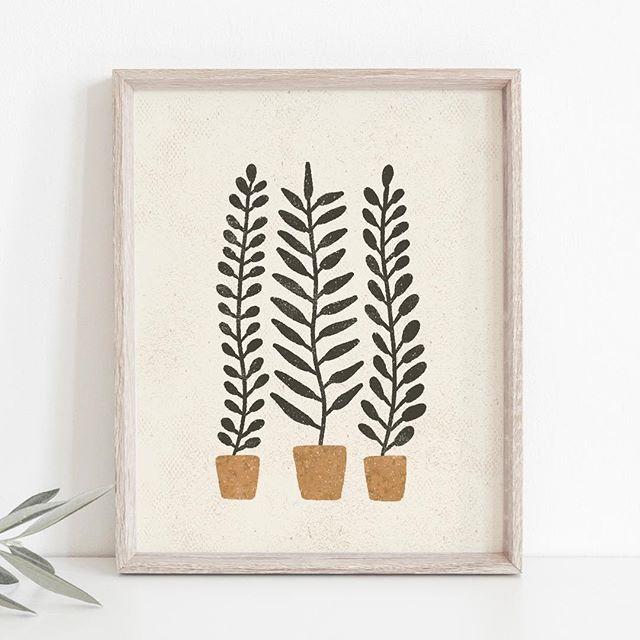 Potted Ferns Wall Art Print