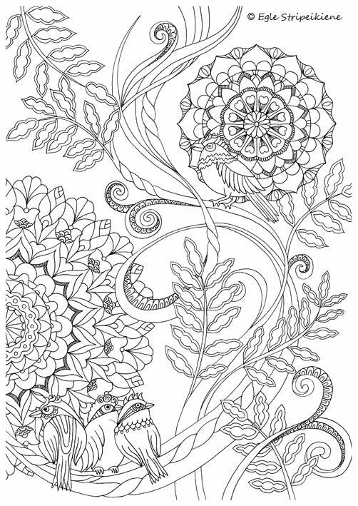 Coloring Page For Adults Mandala Birds By Egle Stripeikiene Size