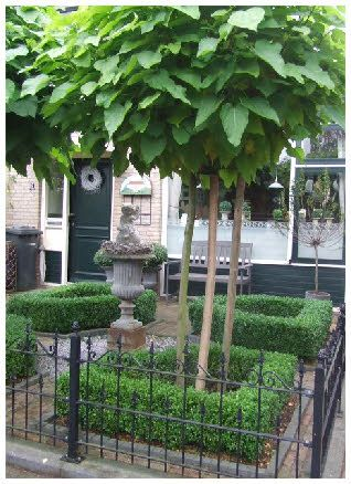 Boxwood courtyard stunning small formal front yard for Front yard courtyard design