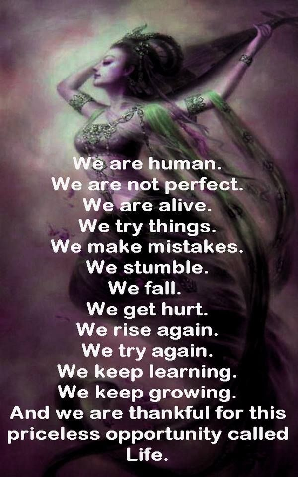 We Are Humanwe Are Not Perfect We Are Alive We Try Things We