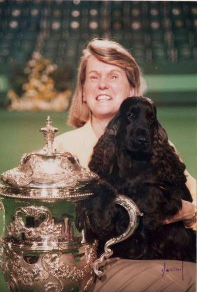 Crufts Best In Show 1996 Canigou Cambrai My Childhood Dog S
