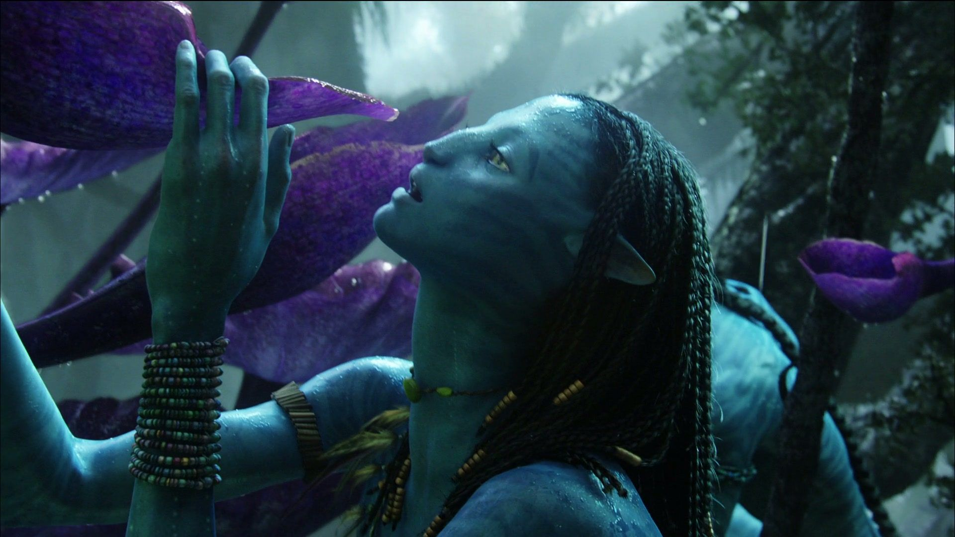 sow-avatar.1080p 3844 | james cameron, avatar and movie