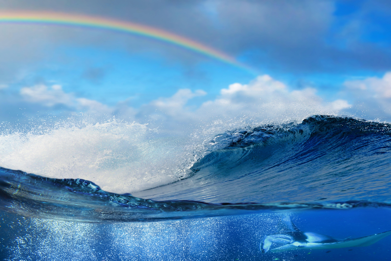 океан в картинках слайд шоу чем заключаются особенности