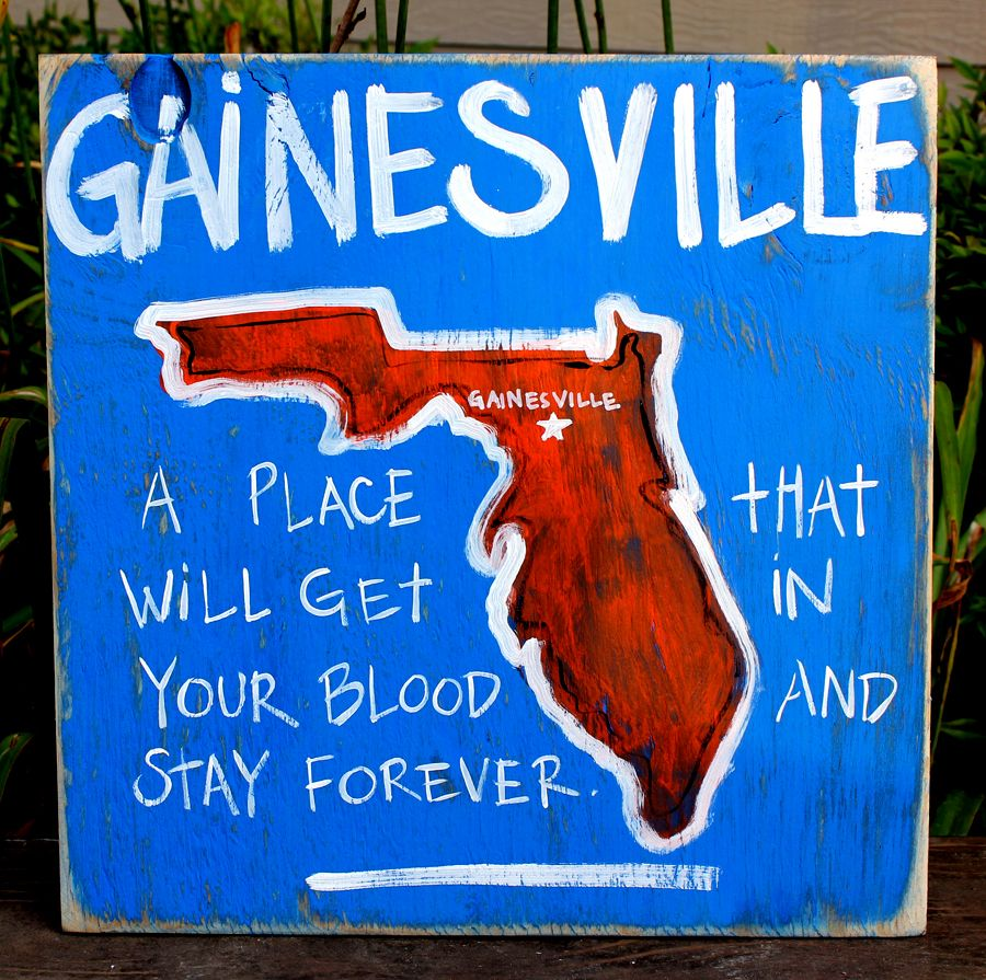 the south-gainesville