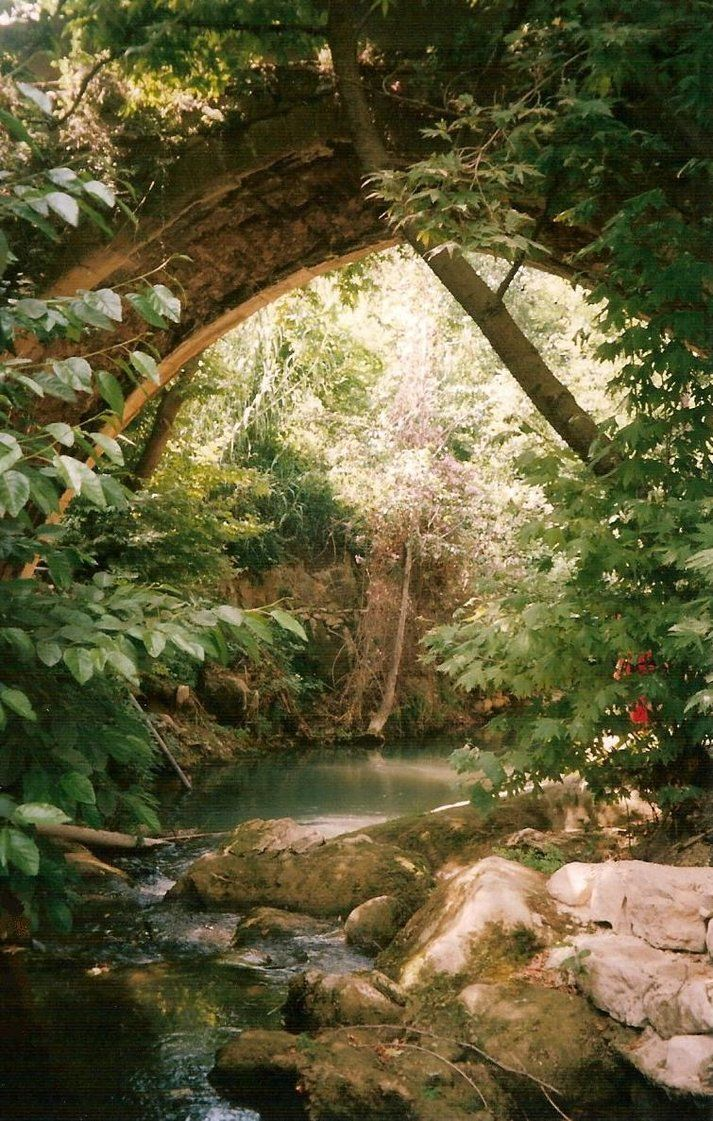 The Archway to the Fae