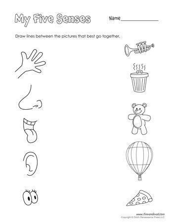 A free five senses printable for preschool students and teachers