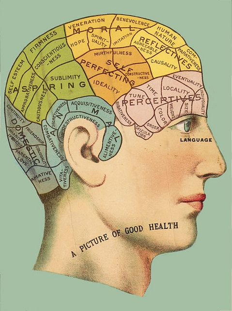 Phrenology Head Chart (With images) | Phrenology head