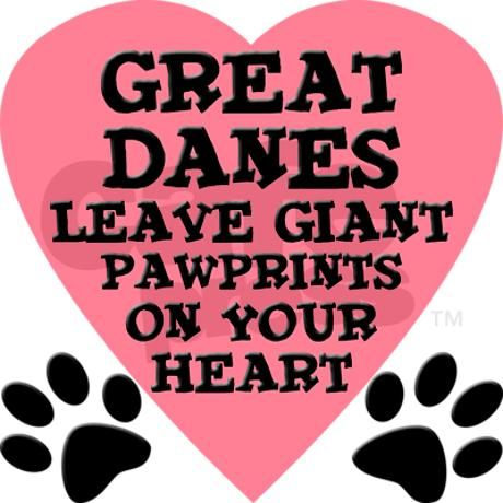 Great Dane 3 Great Dane Dogs Great Dane Quotes