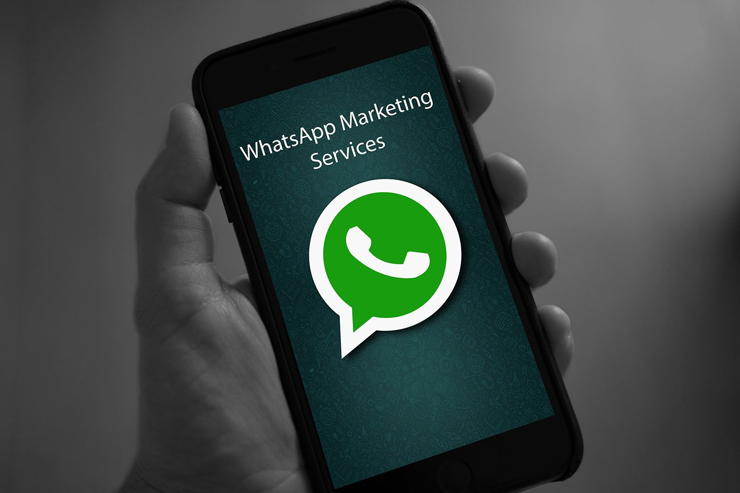 WhatsApp Marketing Services WhatsApp becomes most popular