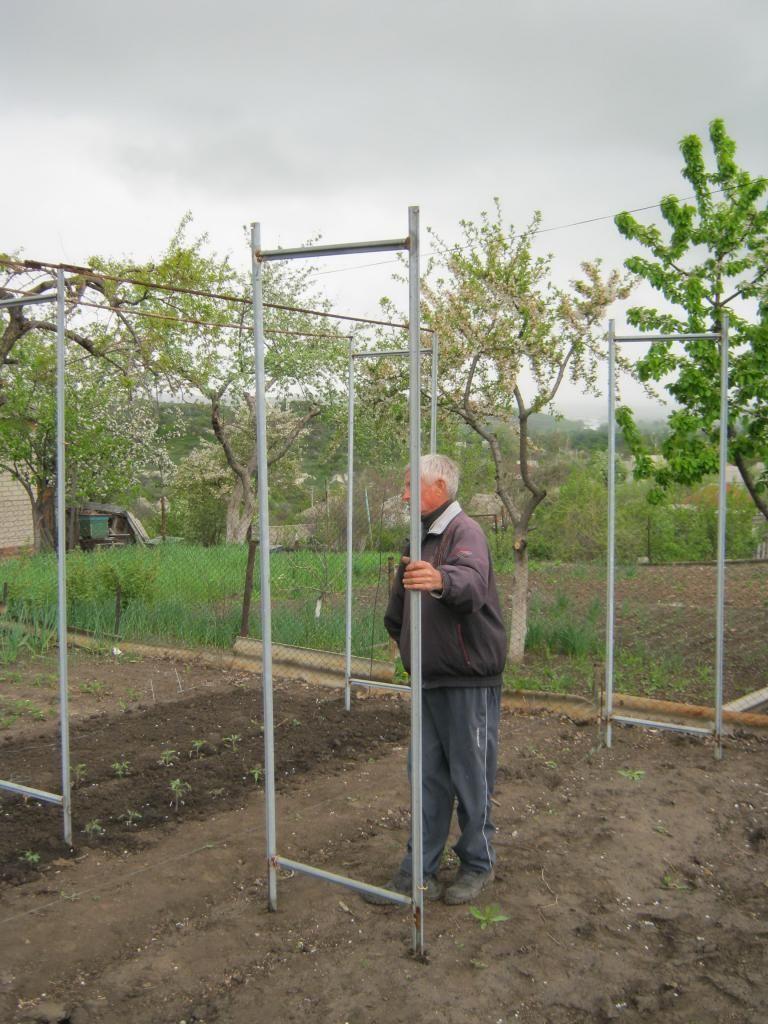 Сделать опору для винограда своими руками