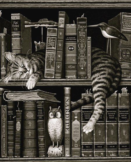 Cat-Library...
