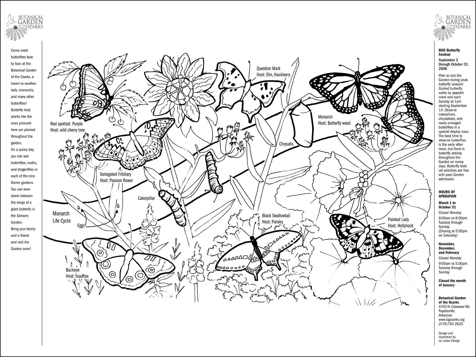 Butterfly coloring page | Kids: Coloring Book | Pinterest | Coloring ...