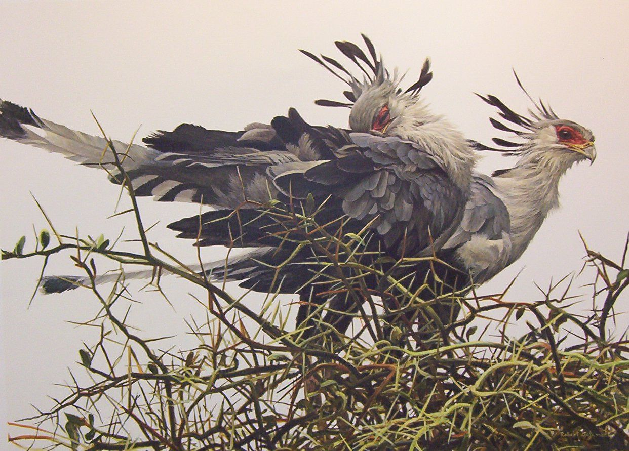 "Robert Bateman, ""At the Nest -- Secretary Birds"""