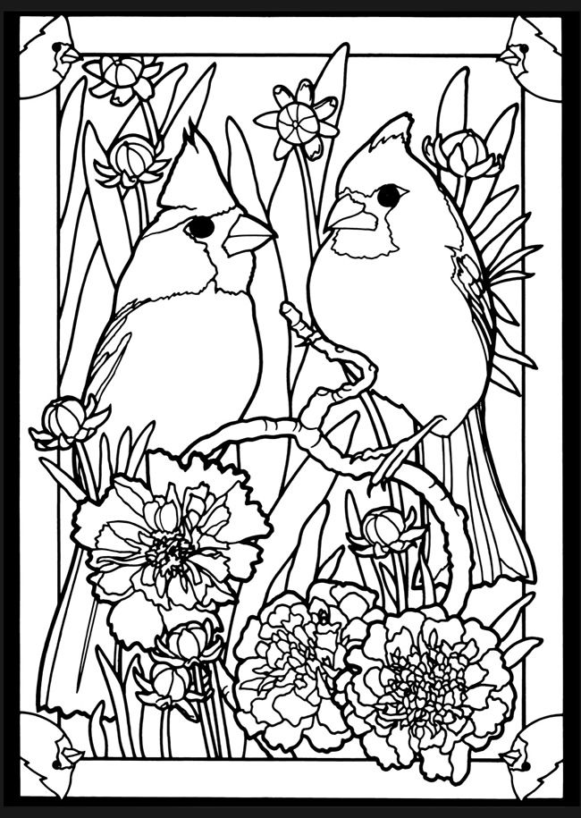 Beautiful Birds In Mated Pairs Stained Glass Coloring Book