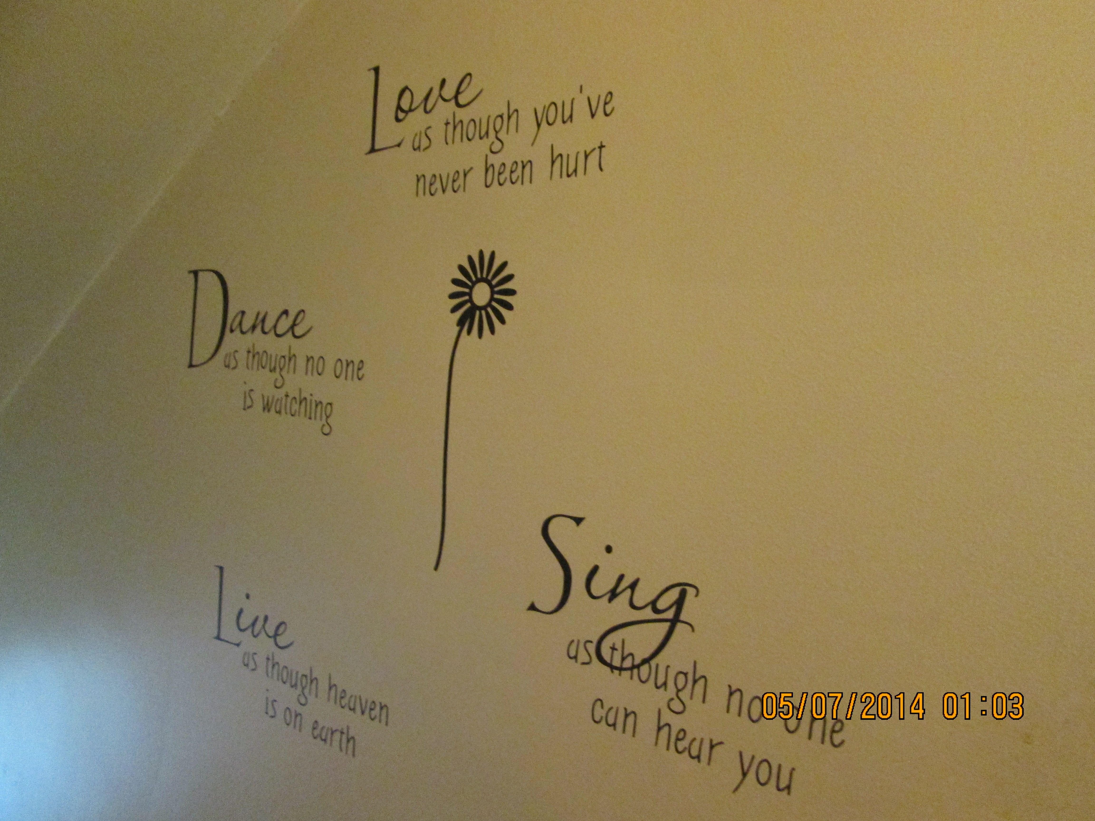 decals ive done on my walls