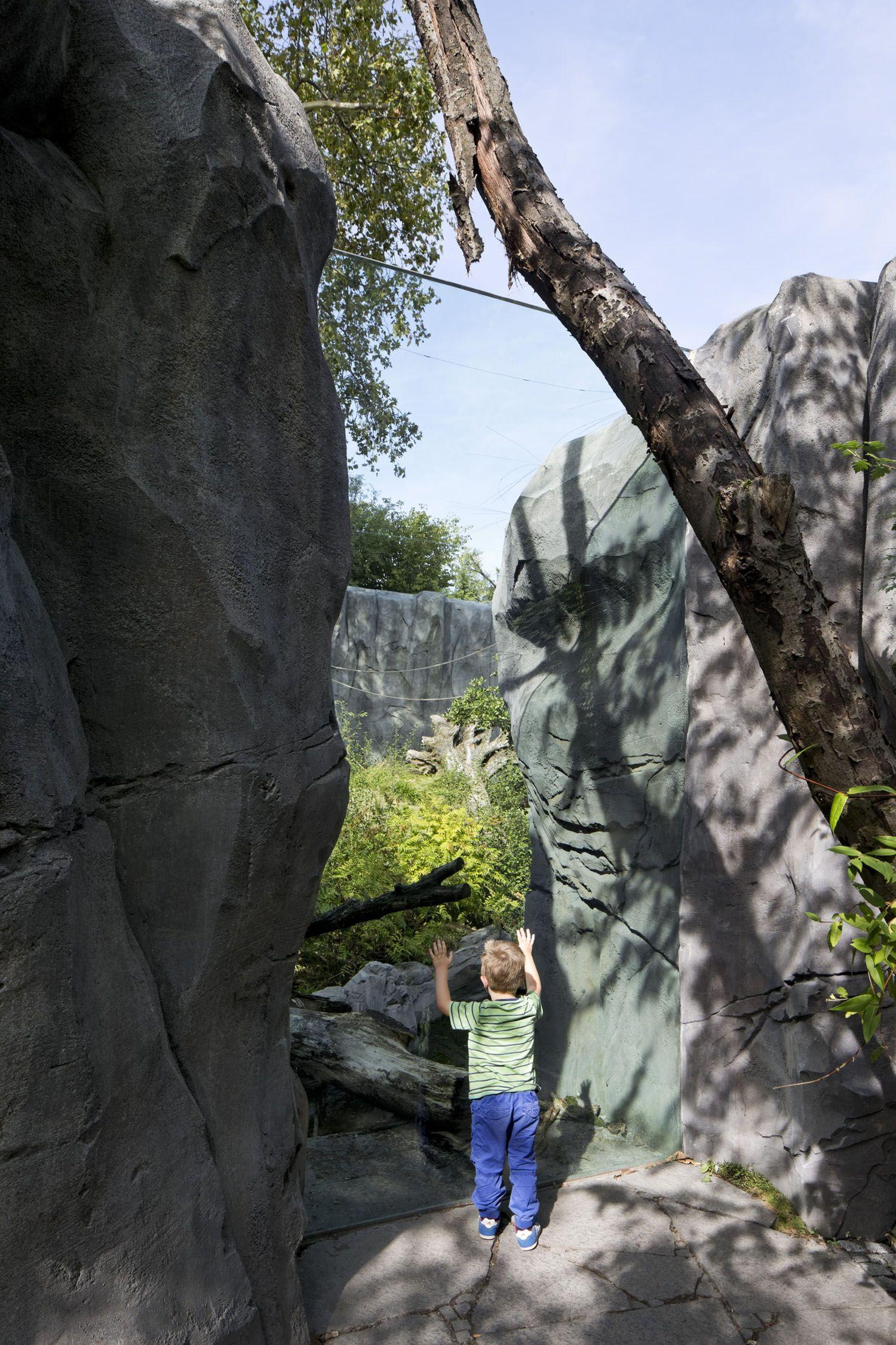 """Projekt """"Bärenanlage Zoo"""