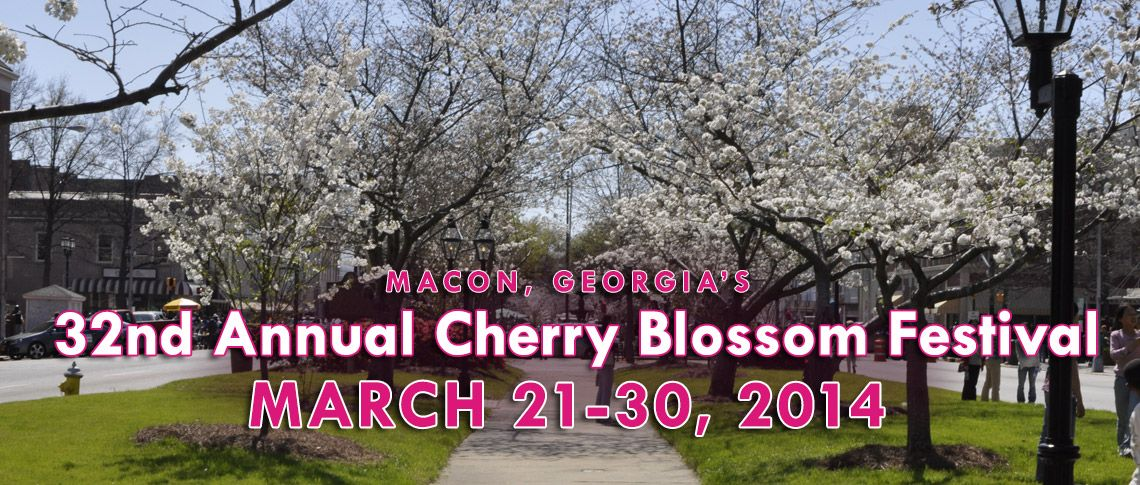 Cherry Blossom Cherry Blossom Festival Cherry Blossom Blossom,Sherwin Williams Powder Blue Paint Color