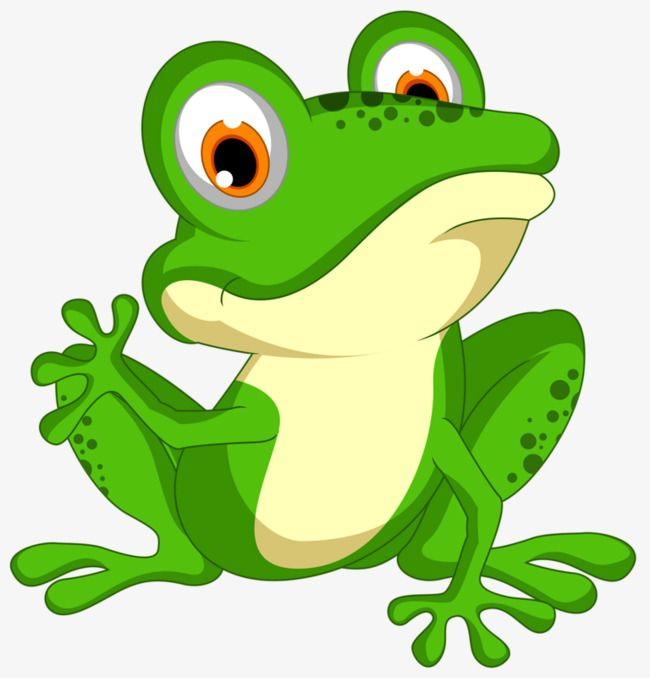 Green Frog Png And Clipart Cute Frogs Frog Art Frog Coloring Pages