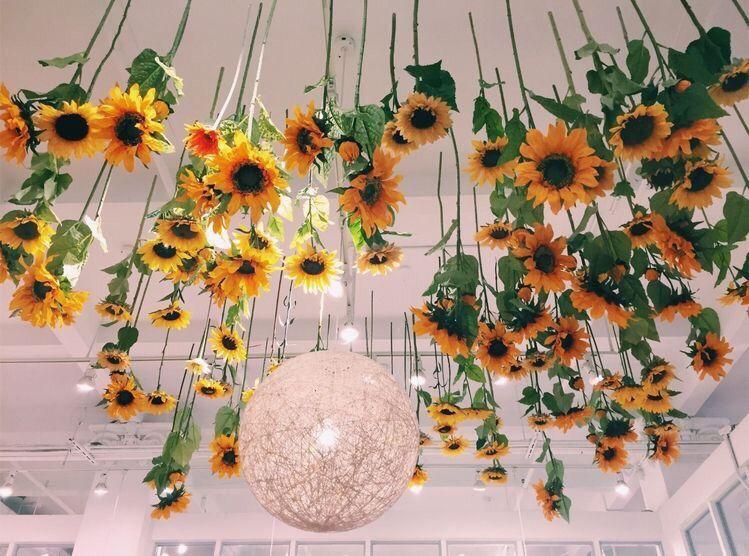 Vsco Freshvibezz Images With Images Sunflower Room