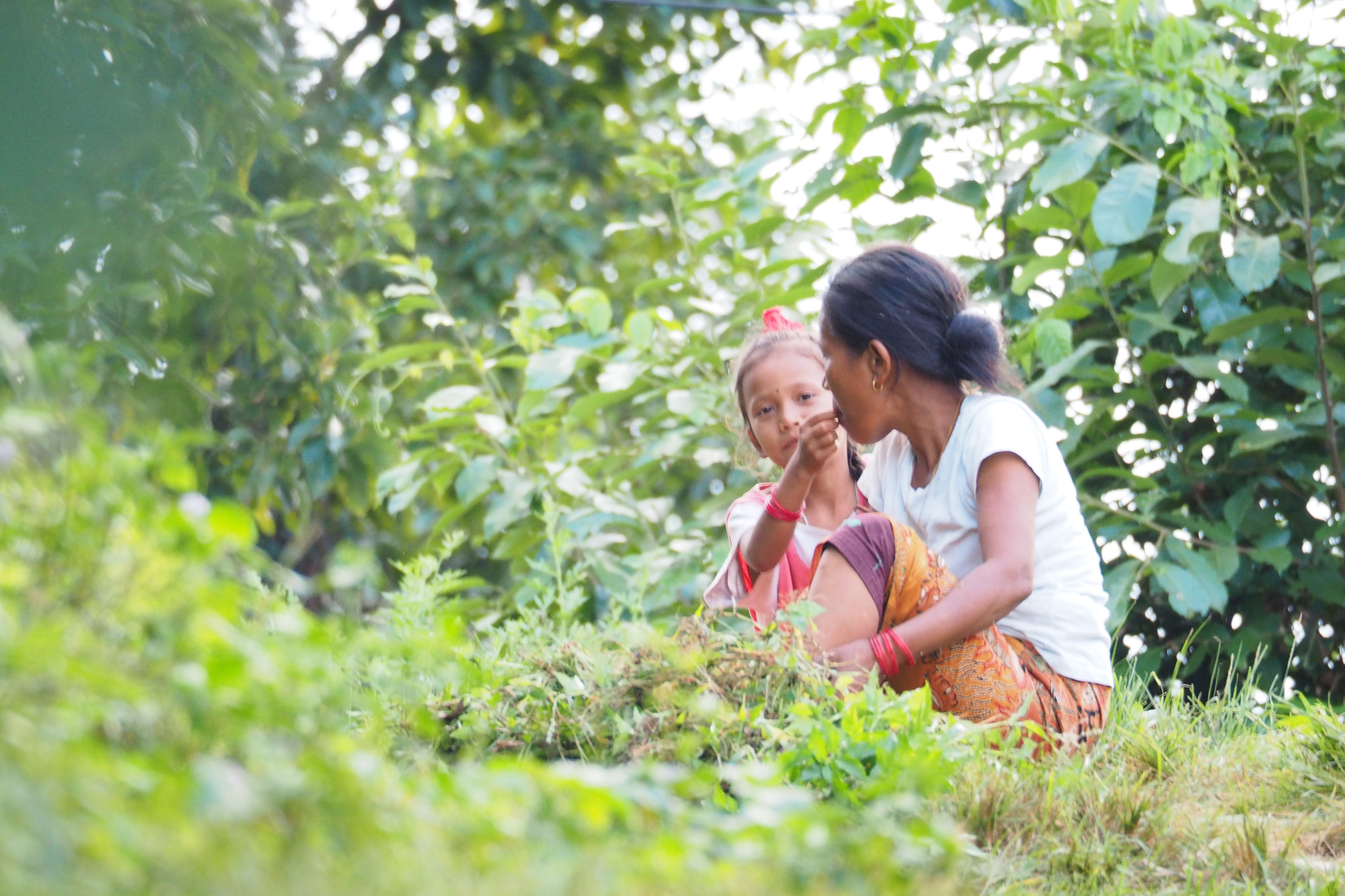 A young girl feeding her mother during a restmoment of cutting leaves of trees hanging over a walking path in the hills of Begnas lake (Nepal) South of Pokhara