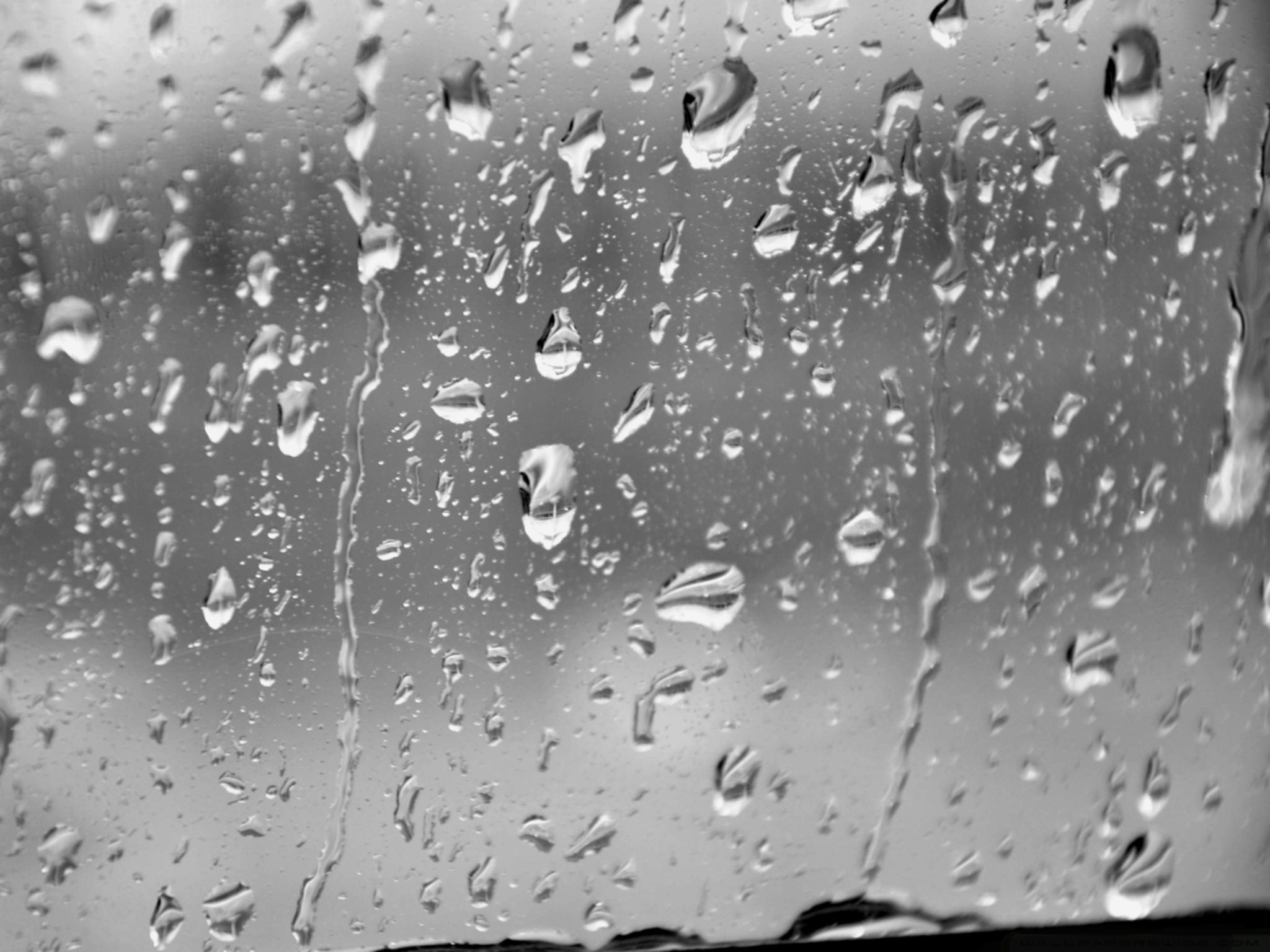 Regentropfen Raindrops Natureza Molhado Vidro