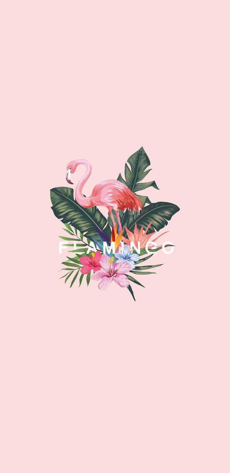 Dank an den Besitzer dieses niedlichen Flamingos ♥. . . # SamsungS9Wallpaper #Samsung ... - Hintergrundbilder iphone - Wallpaper