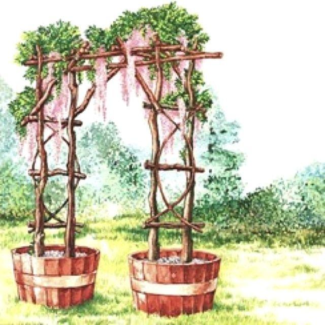 Rustic Wedding Arbors: Rustic Wedding Arbor Ideas
