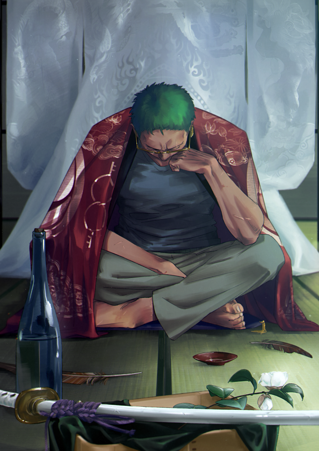 To be fair, there was never a mountainous difference in strength between luffy and zoro. Roronoa Zoro in 2020 | Roronoa zoro, Cool anime wallpapers ...