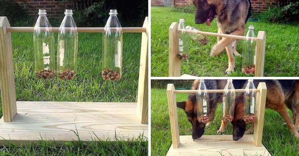 Comedero Juguete Botellas Hacer Perros Cómo Un Con Plástico De Para 54Ac3jLqR