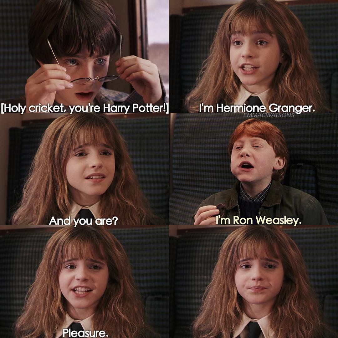 Pin By Nicole On I Solemnly Swear That I Am Up To No Good Harry Potter Jokes Harry Potter Puns Harry Potter Pictures