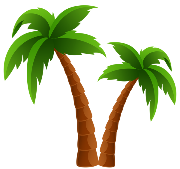 Perfect Two Palm Trees PNG Clipart Image