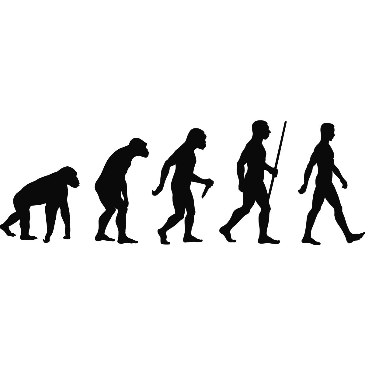 the evolution of man... | Funny | Pinterest | Evolution and The o'jays