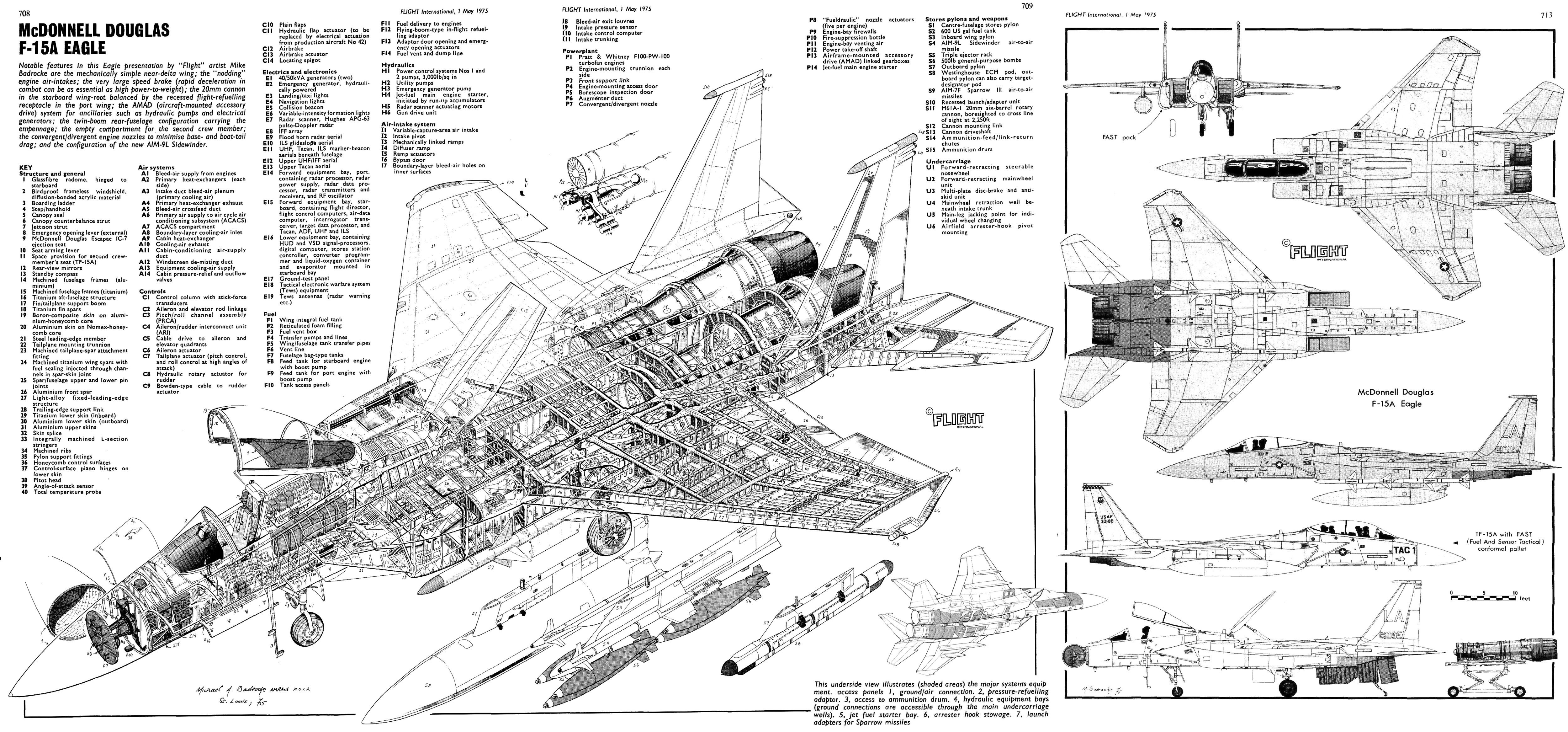 F15 Eagle Cutaways