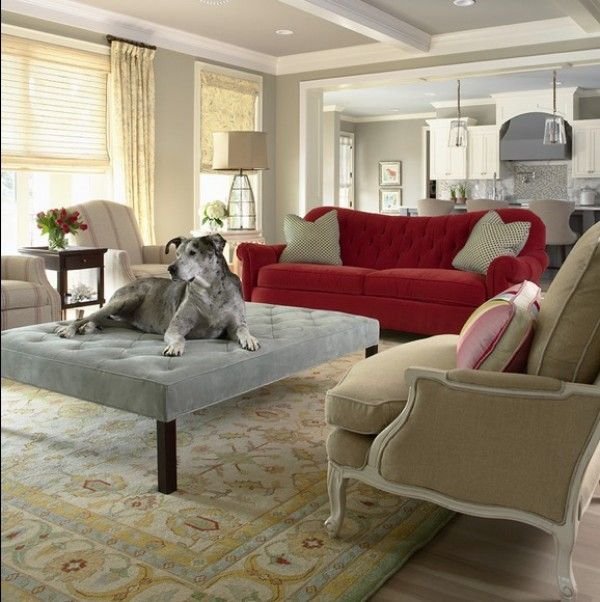 Choosing Pet Friendly Furniture For Your Interiors Contemporary