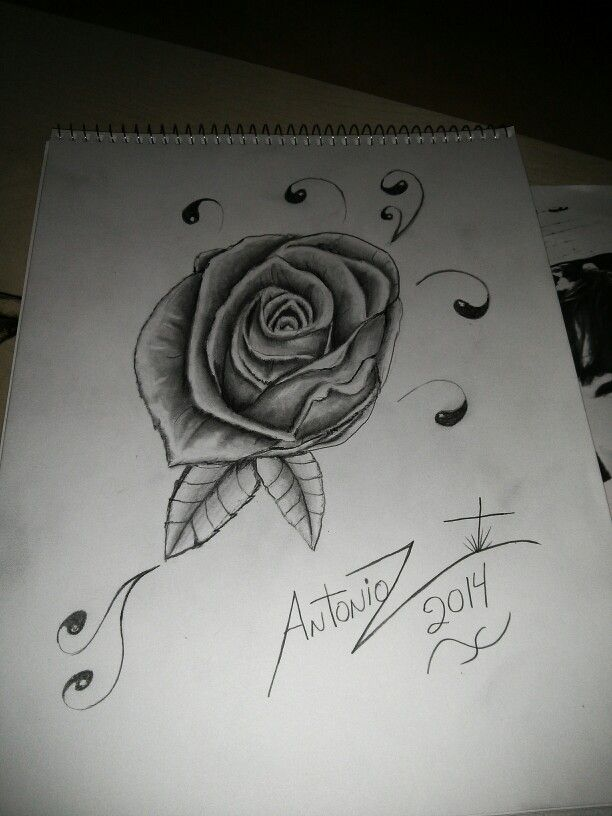 Rose i did , thank you !