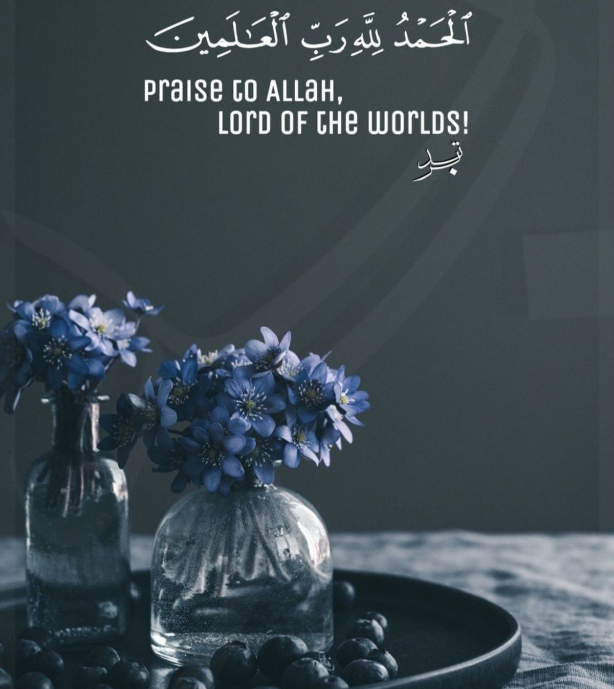 Pin by Fairy Alia on Islamic images And Duas (With images ...