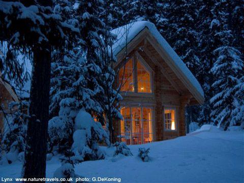 Serene Cabin Winter Cabin Cabin Snow Cabin
