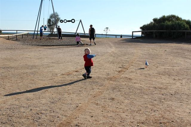 Logan enjoyed the St Kilda Playground a lot and even chased the seagulls. Thank you David Cook for your great photos. #stkildaplayground @cityofsalisbury