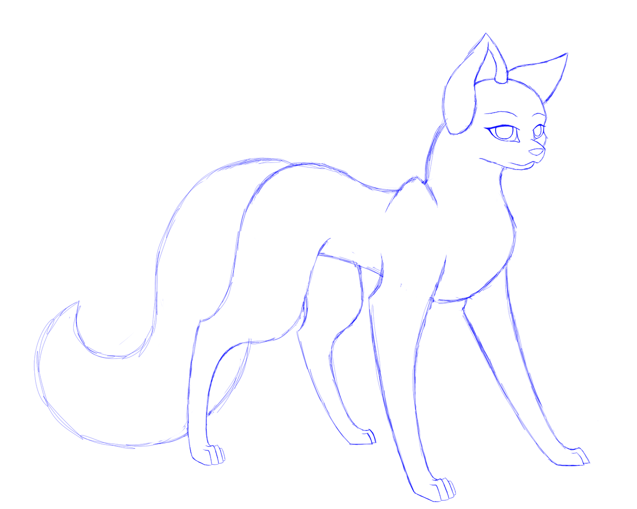 Female Wolf Base Updated Cute Wolf Drawings Wolf Base Wolf Drawing