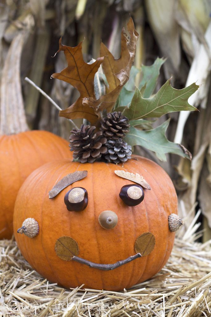 15 Family Friendly Halloween Crafts and Activities Fall and - halloween activities ideas