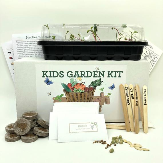 Diy Garden Kit For Kids Learn How To Grow Your Own Vegetables