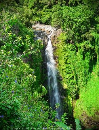 Makahiku Falls Is Definitely One Of The Best Waterfalls Youll See Along Bamboo Forest Trail