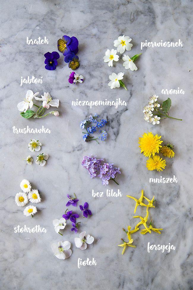 Jadalne kwiaty do dekoracji ciast i deserów kwitnące wiosną, można je sadzić w przydomowym ogródku lub na balkonie, część znajdziemy na łąkach i w sadach.