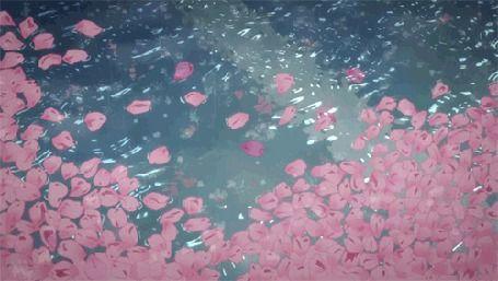 Розовые лепестки под дождем | DESZCZ в 2019 г. | Анимация ...