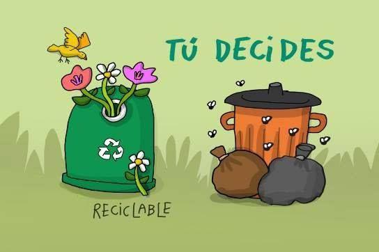Destina Un Horario Al Dia Para Reciclar Tus Residuos Reciclaje Contaminacion Dia Mundial Del Medio Ambiente Dia Del Medio Ambiente Salud Y Medio Ambiente