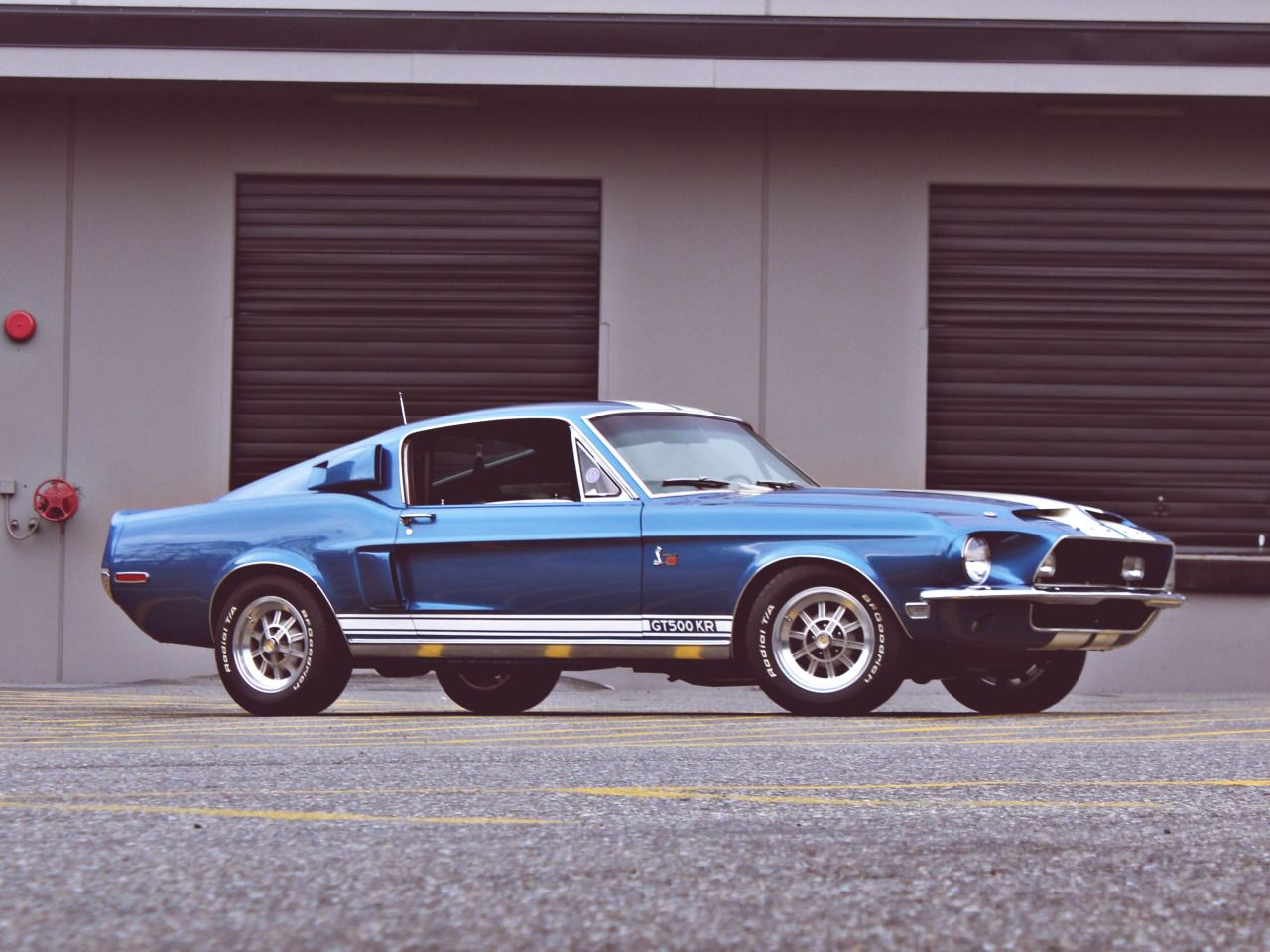 Just Another Pair Of Eyes Theoldiebutgoodie 1968 Shelby Mustang Gt500kr Shelby Mustang Gt500 Mustang Shelby 1968 Ford Mustang Fastback