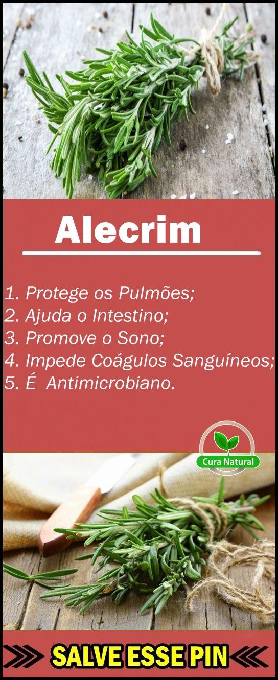 Os 30 Beneficios Do Alecrim Para Saude Alecrim Alecrimplanta